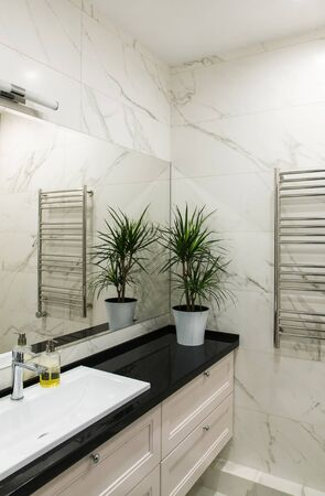 Bathroom with big mirror and potted plant Imagens