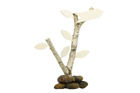co2 neutral: Birchwood with leafs and direction arrow to the right. Symbolizing a co2 neutral direction  future