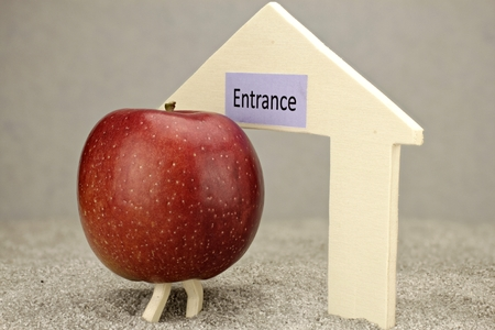 Apple in front of entrance - symbol of healthy changing