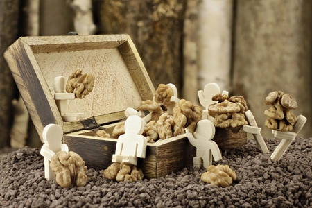 lay down: Males lay down a supply of walnuts Stock Photo