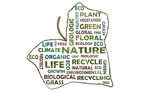 Photographically created tag cloud with key words such as nature, geology, ecology cut out on an ivy leaf