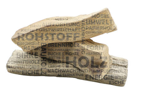 Word cloud with wood as background and transparent relevant keywords on the subject of raw material wood