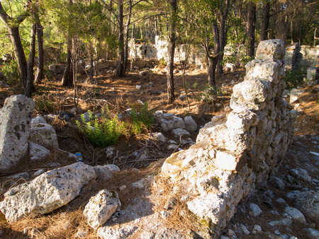 Phaselis, Turkey, beautiful ancient greek ruins in pine forest, old city in Turkish bay