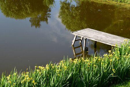 footbridges: Footbridge and the yellow irises.