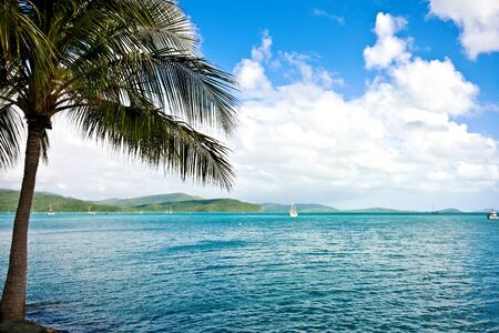 Airlie Beach Harbour Stock Photo - 14085452