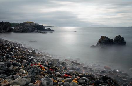 highlands: Rocky coastline near Arisaig with red alga, Highlands, Scotland Stock Photo