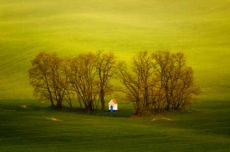ceska: Little chapel in clump of trees among green meadows, Moravia, Ceska Republika
