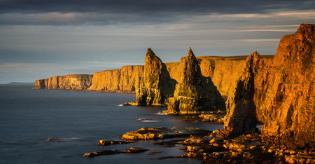 Panorama of Duncanby Head cliffs in sunrise light, northern Scotland 免版税图像