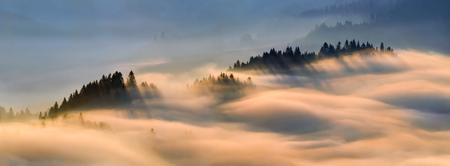 Fog in Pieniny mountains in sunrise light, Poland