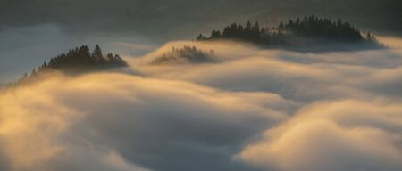 Panorama of fog in Pieniny mountains in sunrise light, Poland