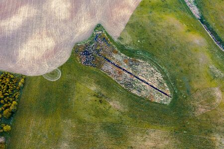 Shape in form of fish on meadow with grass from drone, Poland