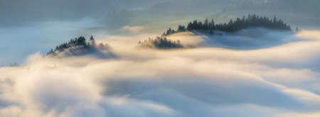 Panorama of fog in Pieniny mountains in sunrise light, Poland