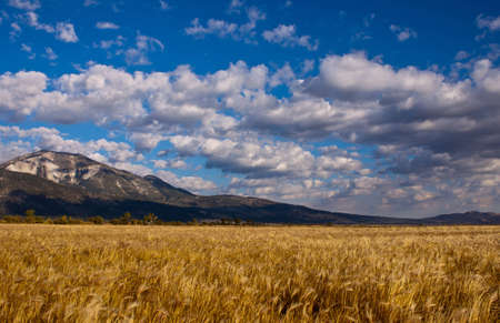 Landscape image of Slide Mountain Nevada.