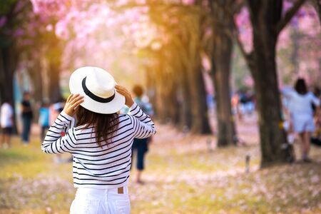 Rear view of young woman trying to selfie herself in a park with pink trumpet trees flower. Imagens
