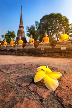 chaimongkol: Aligned buddha statues at Wat Yai Chaimongkol Ayutthaya bangkok thailand