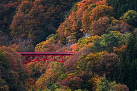 Schöne Herbstszene auf Berg am Takamura-Dorf in Nagano, Japan Standard-Bild - 75522889
