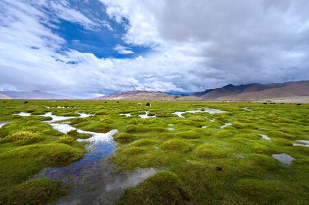 Beautiful view of Ladakh region in summer in north India