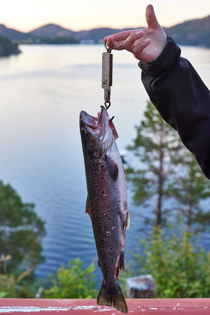 speckle: Weighing a freshly caught trout