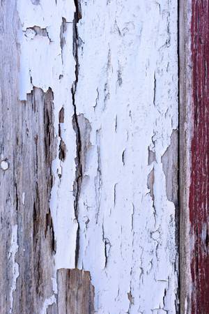 Crackled white paint on wooden wall.
