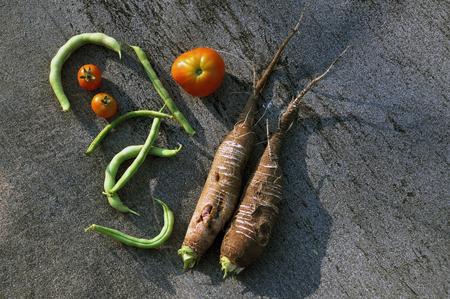 dikon: Fresh tomato, radishes and green beans on a dark gray background. Foto de archivo