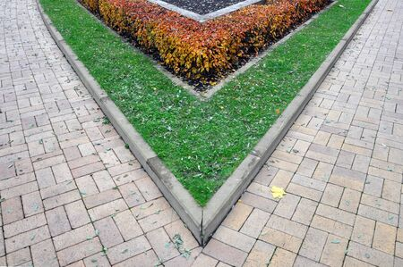 beautification: A fragment of urban beautification. The angle of the paving slabs, green lawn and red shrubs.