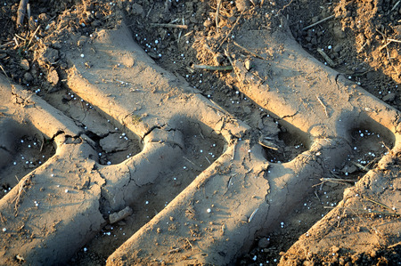 sandy soil: Texture of dry sand surface with a track of wheel tractor and cracks closeup. Stock Photo