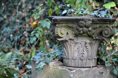corinthian column: Concrete Corinthian capital overgrown with green ivy close-up. Stock Photo
