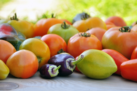 Crop of yellow and red tomatoes, cucumbers, sweet peppers on light wood surface. Side view, selective focus.