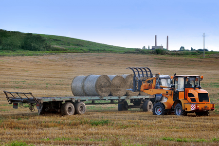 Agricultural field in Belarus. The process of collecting and handling haystacks using two harvesting machines.