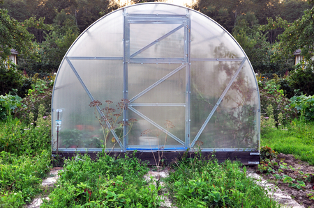 conservatory: Agricultural semicircular greenhouse with plants in the garden.