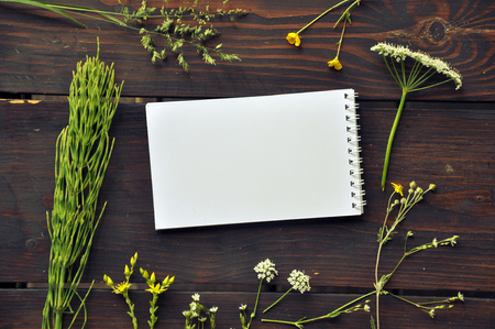 Mock up of white paper notepad on dark wooden table with forest herbs. Top view.