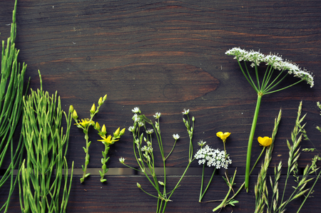 Dark brown wooden table with bunches of summer herbs and flowers. Top view and empty space.