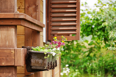 decorative balcony: Flowers growing outside in a pot on a background of a wooden house with shutters. Stock Photo