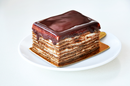 Biscuit cake with chocolate close-up isolated.