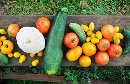 Autumn food background. Tomatoes, zucchini, cucumbers on dark wooden surface. Top view.