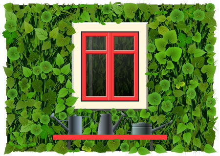 Green wall with plant and red window.