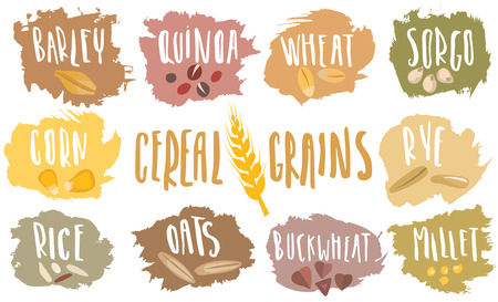 A Vector set of cereal emblems with white handwritten lettering and hand-drawn stylized grains. For packing groats, advertising healthy food.