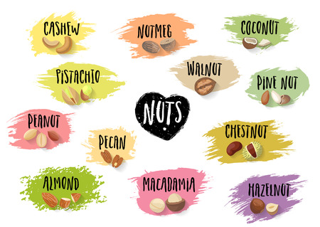 Vector set of trendy emblems of various nuts and black lettering on colorful blots. Ilustracja