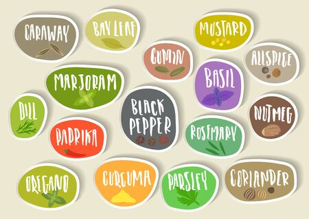 Set of natural herbal seasonings and spices illustration
