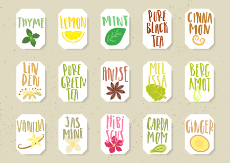 Set of natural organic additives for drinks on colorful text Ilustracja
