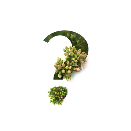 Cut out question mark with growing plant inside. Part of the alphabet.