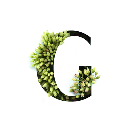 Cut out letter G with growing plant inside. Part of the alphabet.
