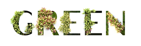 Cutout word Green with growing plant inside. Spring and Bio concept Stock fotó