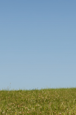 Natural background of a green grassy hilltop against a clear blue summer sky with copyspace Stock Photo - 21338502