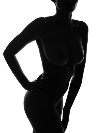 Beautiful silhouette portrait of sexy curvy woman   photo