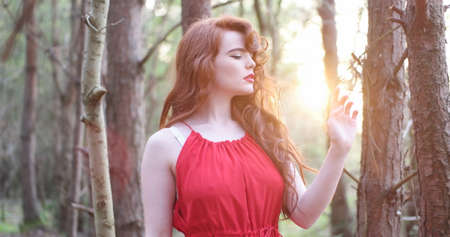 ravishing: stylish Woman in red Dress Posing at the Woods , sunset