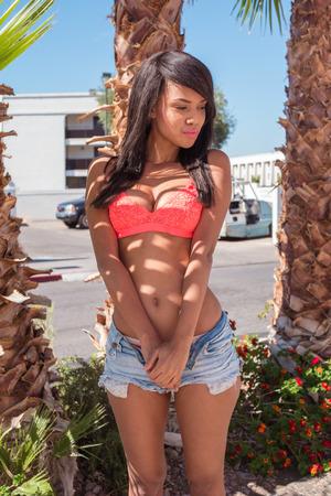 Sexy Brünette Frau unter der Palme trägt Bikini und Shorts poutin Standard-Bild - 50750636