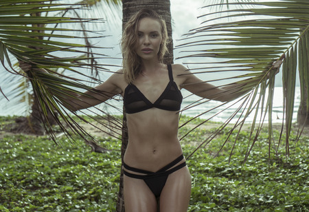 palm: Beautiful blonde glamour woman wearing black swimwear  on a beautiful summer holding palm tree leaves in her hands