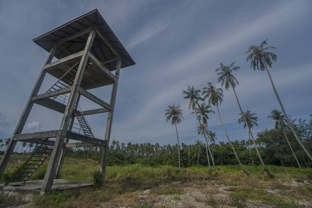 observant: Bottom view of observation tower with palm trees over blue sky with clouds Stock Photo