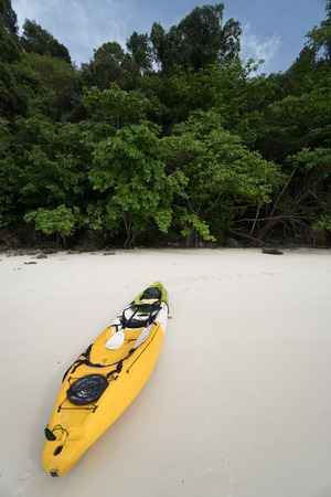 yellow trees: A yellow kayak on a tropical beach over green trees background